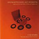 Verona Improvisers Jazz Orchestra feat. Parrini & Tagliazucchi E se domani. The Carlo Alberto Rossi Songbook